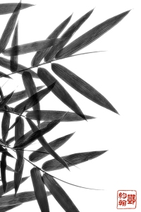 Bamboo Leaf Collage